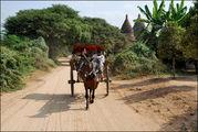Экскурсионная повозка / Мьянма