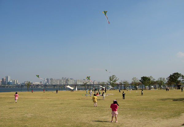 В парке на берегу реки, Сеул / Фото из Южной Кореи