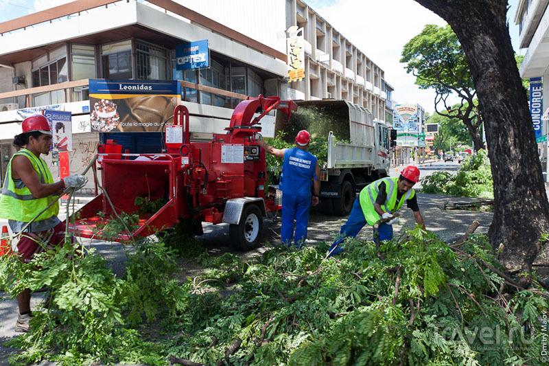 Работа коммунальных служб на Таити / Фото из Французской Полинезии
