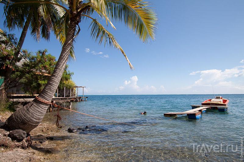 Побережье Таити / Фото из Французской Полинезии