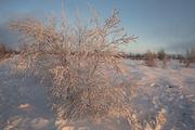 Под снегом / Исландия