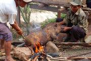 Приготовление пищи / Лаос