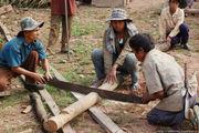Хояйственная деятельность / Лаос