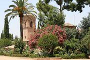 Растительность и архитектура / Испания