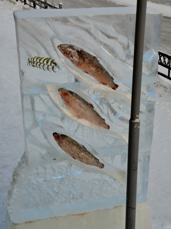 Вмерзшая в лед рыба, Якутск / Фото из России