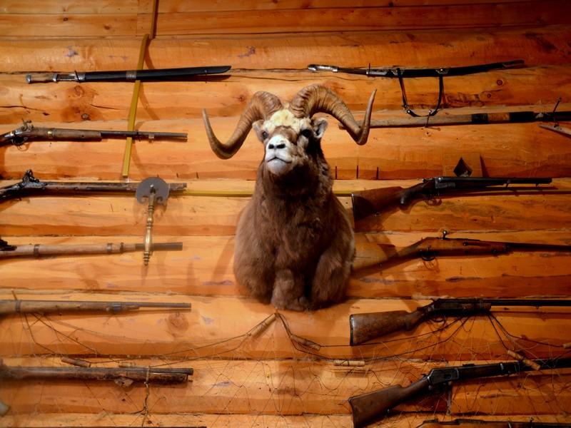 Экспонаты этнографического комплекса Чочур-Муран в Якутии / Фото из России
