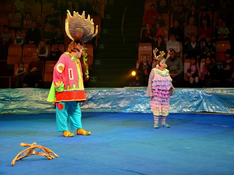 Выступление артистов в якутском цирке / Фото из России