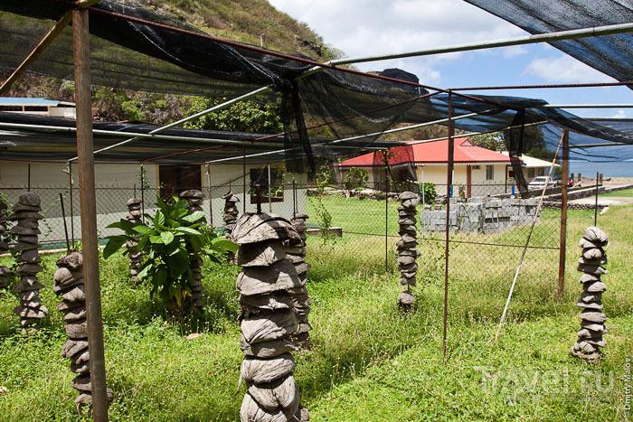 Сушка скорлупы кокосового ореха на острове Тахуата / Фото из Французской Полинезии