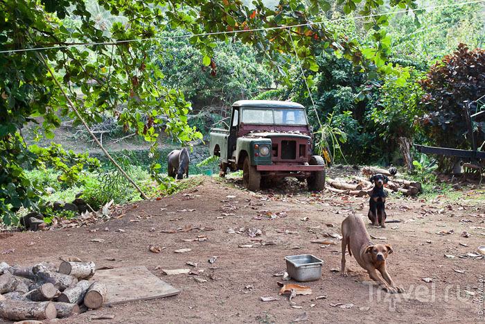 Машина на острове Тахуата / Фото из Французской Полинезии