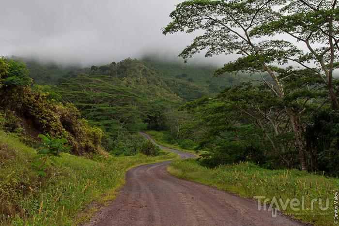 Грунтовая дорога на Маркизских островах / Фото из Французской Полинезии