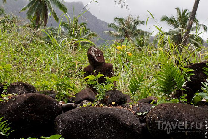 Истукан на частном участке, Маркизские острова / Фото из Французской Полинезии