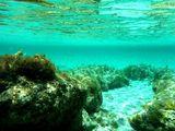 Поплавать в маске / Греция
