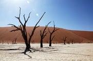 Долина Смерти / Намибия