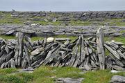 Каменный забор / Ирландия