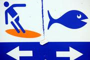 Знаки на пляже / Новая Зеландия
