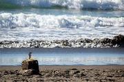 Волны и песок / Новая Зеландия