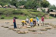 Местная еда лаплап / Вануату