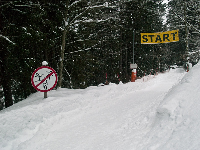 Санная трасса рядом со Шмиттенхоэ / Фото из Австрии