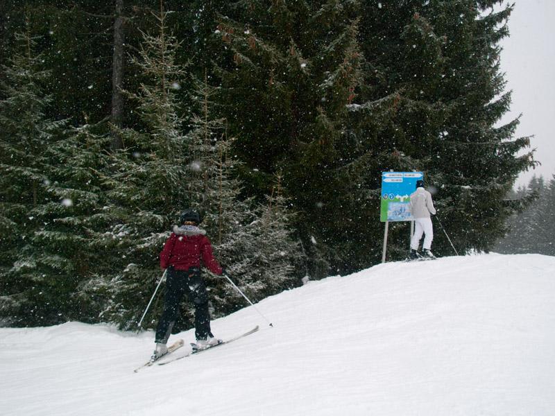 """Развилка между """"синей"""" и """"черной"""" трассами, Целль-ам-Зее / Фото из Австрии"""