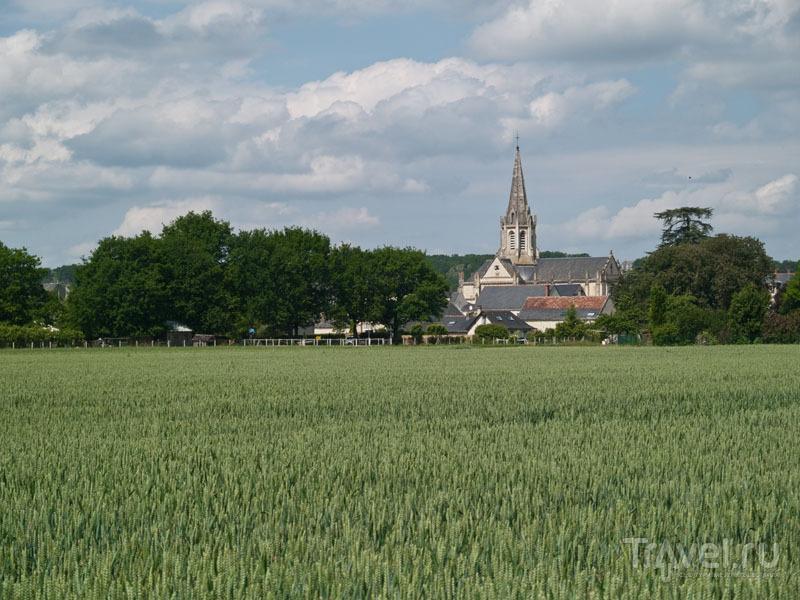 Типичный французский пейзаж / Фото из Франции