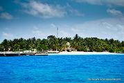 Весь остров / Мальдивы
