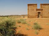 Львы у входа / Судан