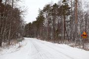 Финская проселочная дорога / Финляндия