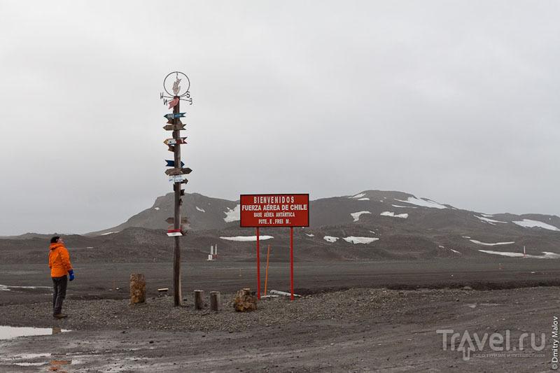 Столб с указателями расстояний у аэродрома Вилья-лас-Эстрельяс / Фото из Антарктики