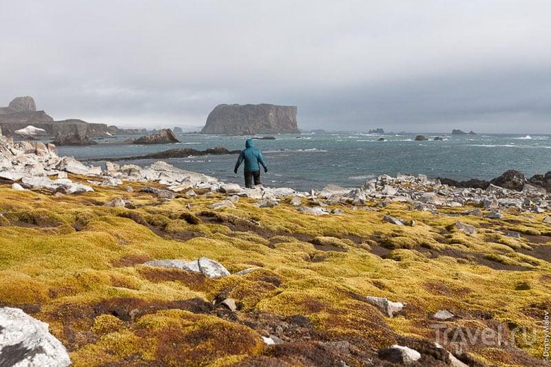 Пейзаж вокруг Вилья-лас-Эстрельяс / Фото из Антарктики
