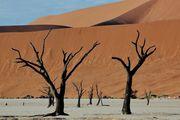 Застыли в танце / Намибия