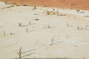 Час после восхода / Намибия