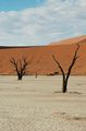 Причудливые формы / Намибия