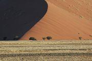Самая красивая дюна / Намибия