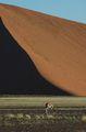 Дюны Соссусфлея / Намибия