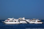 Несколько яхт / Египет
