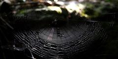 Красивая паутина / Мексика