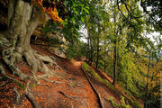 Осенний пейзаж / Чехия
