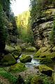 Река в скалах / Чехия