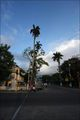Яркий город / Гайана