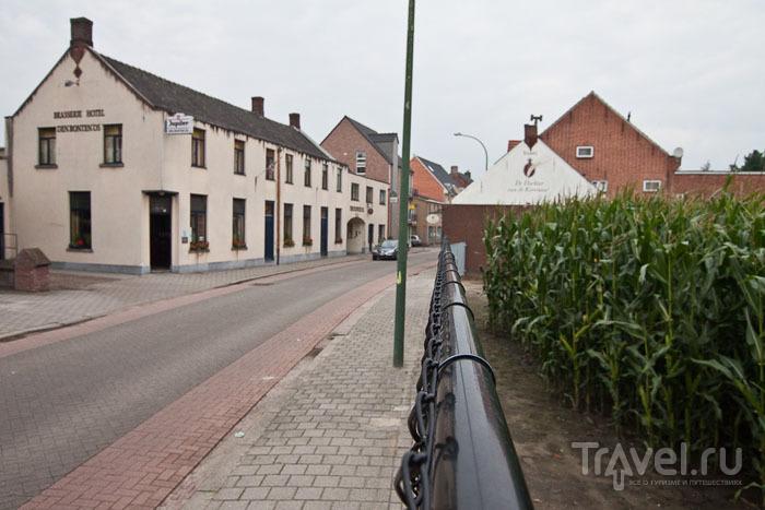 Огороды в городе Барле / Фото из Бельгии