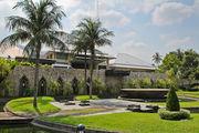 Пальмы в саду / Таиланд