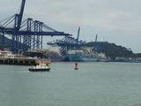 Разгружают контейнеры / Панама