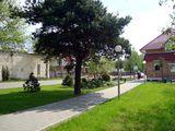 Газоны и деревья / Белоруссия