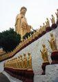 Подъем к Будде / Тайвань