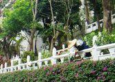 Монах-садовод / Тайвань
