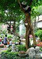 Китайский сад / Тайвань
