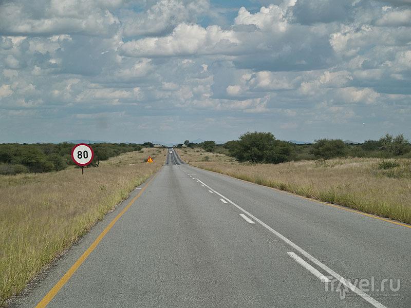 Идеально прямая дорога, Намибия / Фото из Намибии
