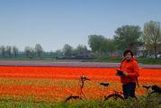 Навигация с планшетом / Нидерланды