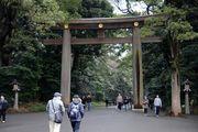 Ворота - тории / Япония
