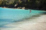 Обитатели пляжа / Виргинские острова (США)